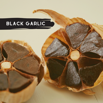 Black Garlic Ingredients Inc.png