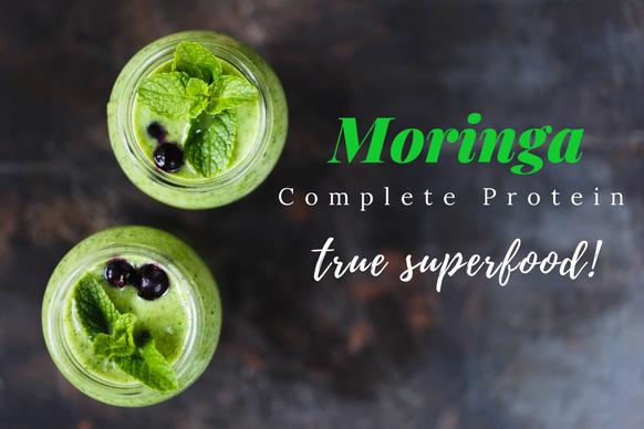 moringa from ingredients inc