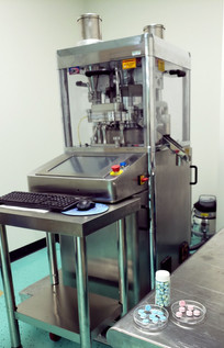 Riva Piccola BiLayer Tablet Press