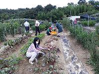 도시농업보수교육 (1).jpg