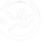 Logo Bencini D wit.png