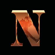 DasKonzpt_N.PNG