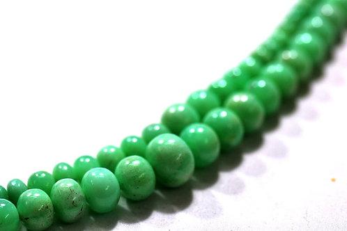 Chrysoprase - 16'' Smooth Beads 1 Strand Australian Gemstone Jewelry Beads
