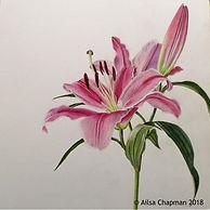 Lilum (Oriental Trumpet Lily)