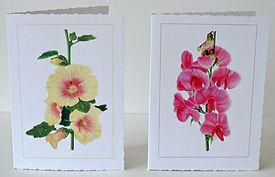 Floral range samples 1.jpg