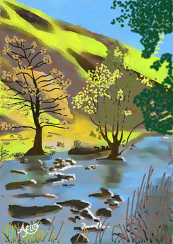 Dovedale 16