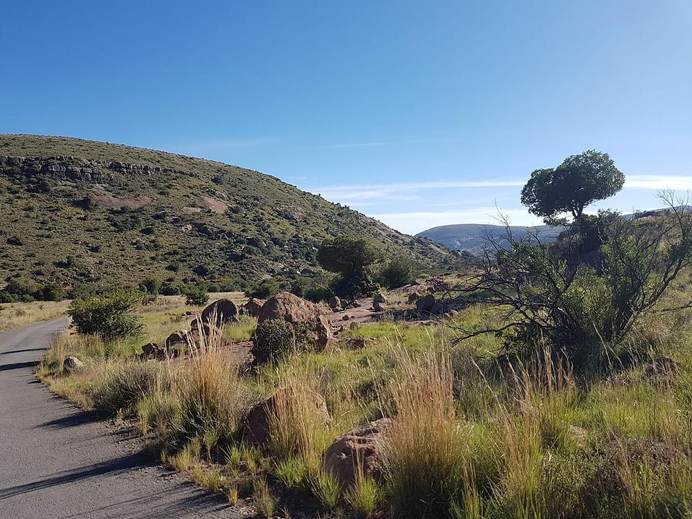 A beautiful landscape in the Mountain zebra National Park