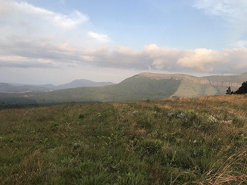 Magoebaskloof grassland habitat