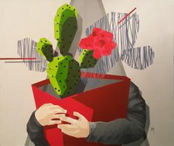 red cactus 2017
