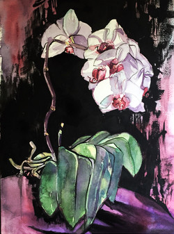 Death of an Orchid.jpg