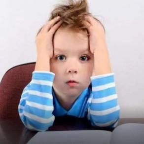 """Scuola e stress. La neuropsichiatra: """"Sì ai compiti a casa, ma i bambini devono farli da soli'."""