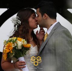 Honey Bee wedding portrait photography