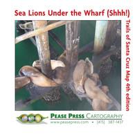 BN JAN AD Sea Lions Under the Wharf.jpg