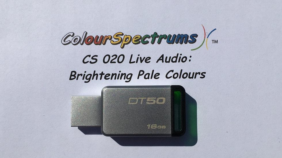 CS 020 Live Audio: Brightening Pale Colours for Facilitators - USB