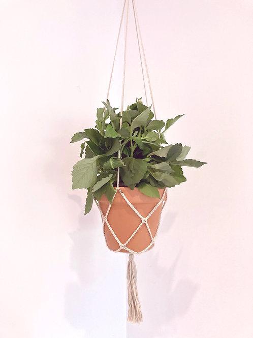 Plant Pot Hanger