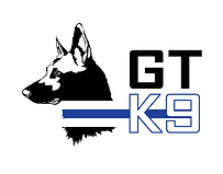 Logo-Final-Option-Web.png