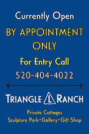 2020_TLR By Appointment Sign_blue F2-01.