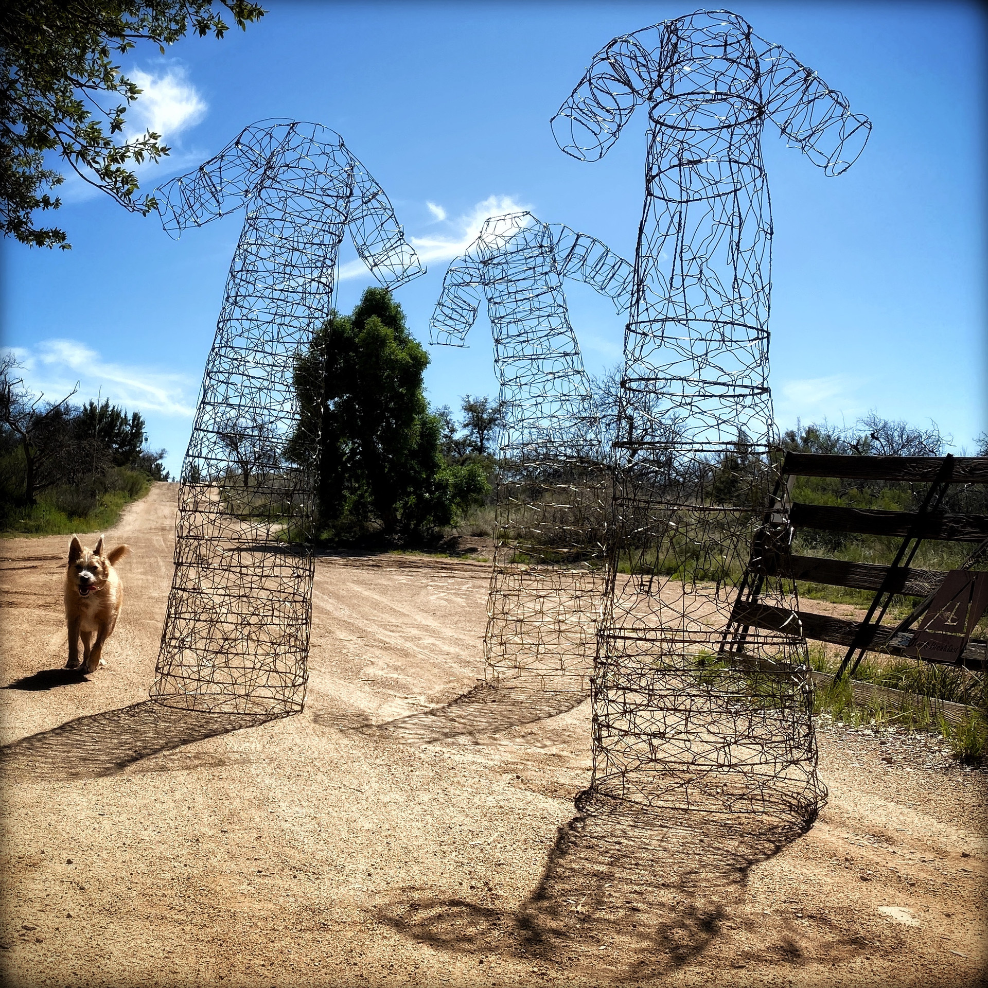 David Adix • Wire Hanger Sculpture