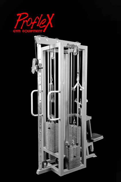 4 WAY TRICEP STATION: 4WT-806