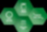 metodologia_etapa_01.png
