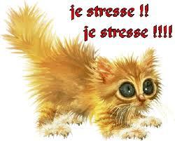 stress-1.jpg