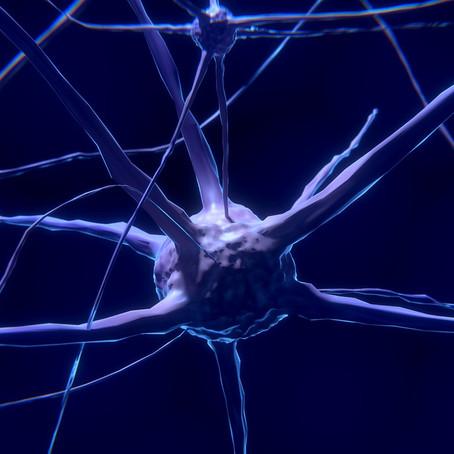 The Power of Regenerative Medicine – Can We Heal Damaged Nerves?