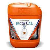 Pecta-Cal.jpg