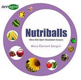 Nutriballs (2).jpg