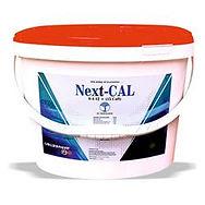Next-Cal.jpg