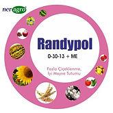 Randypol (2).jpg