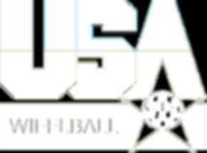 '96 USA Dream Team Logo