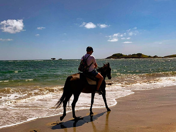 Horseback riding along the beach in St. Lucia at Sandy Hoofs
