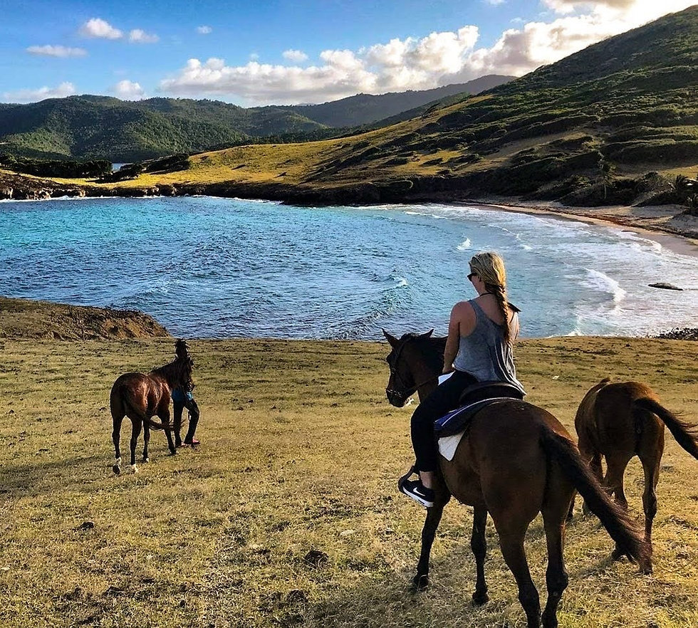 horseback riding on the beach in st. lucia at sandy hoofs