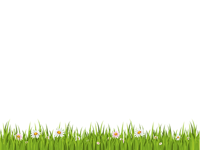 Grass-PNG-File.png