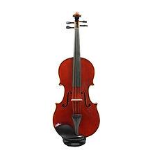 Violas.jpg