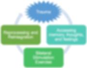 EMDR Diagram1.png