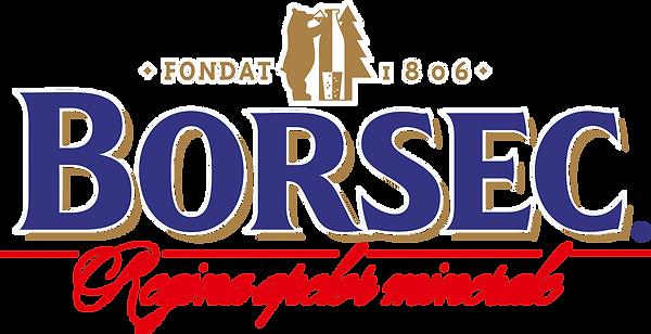 BORSEC_logo WEB.png