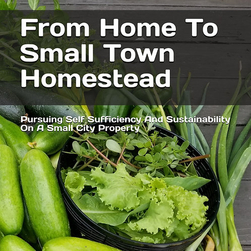 From Home To Small Town Homestead PDF EBook