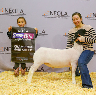 Champion Hair | NEOLA 5 | Kellyville, OK