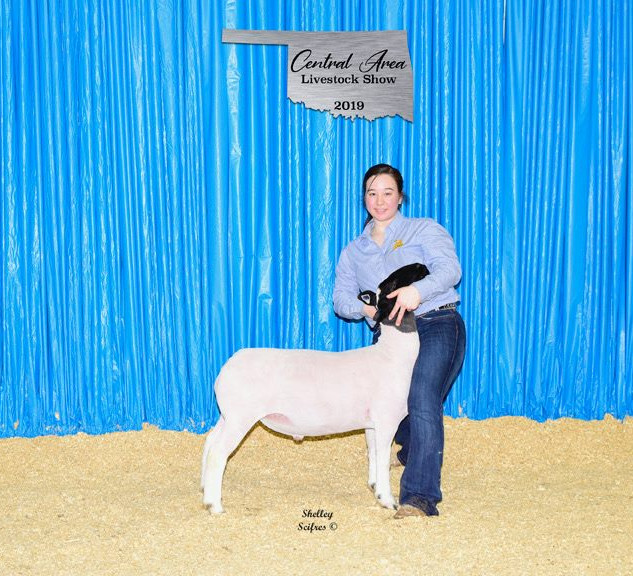 Reserve Champion Hair | Central Area Livestock Show, OK