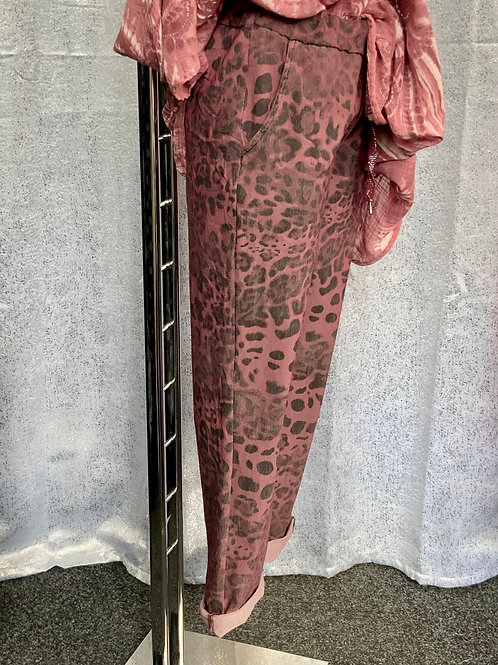 Plum Leopard print magic joggers, fitting from a size 10-20.     1180