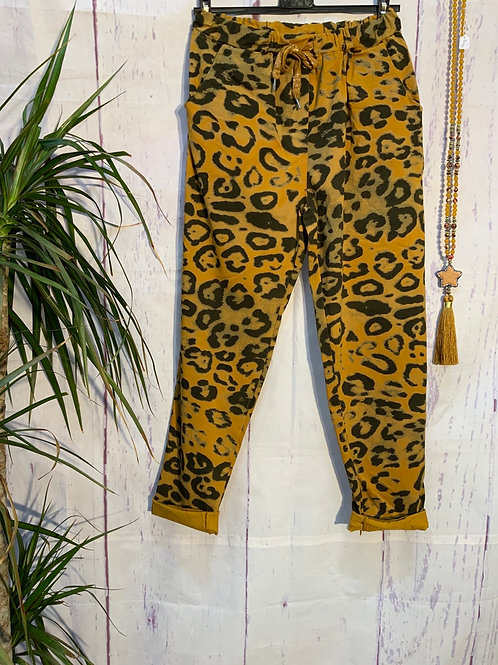 Mustard bold Leopard print magic joggers, fitting from a size 10-20.     20377