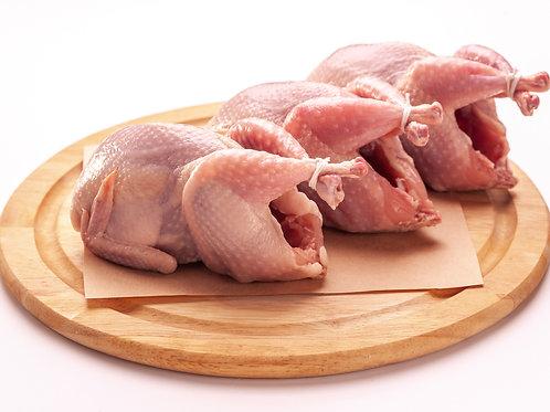 Rabbit, chicken, quail and quail egg