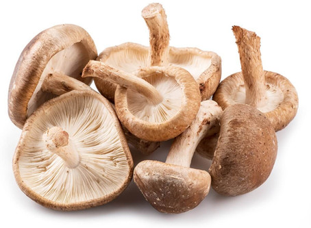 Ingredient of the month: mushrooms