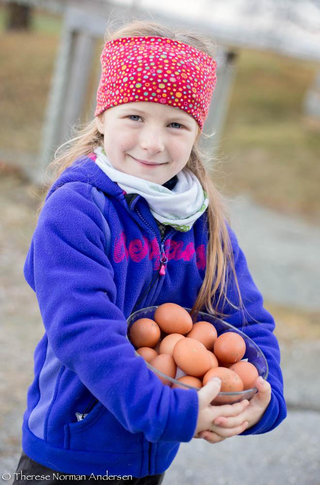 Egg-jente