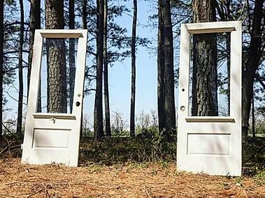 old doors.webp