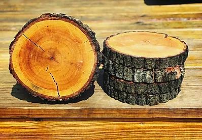 wood logs.webp