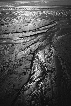 kriss logan black and white
