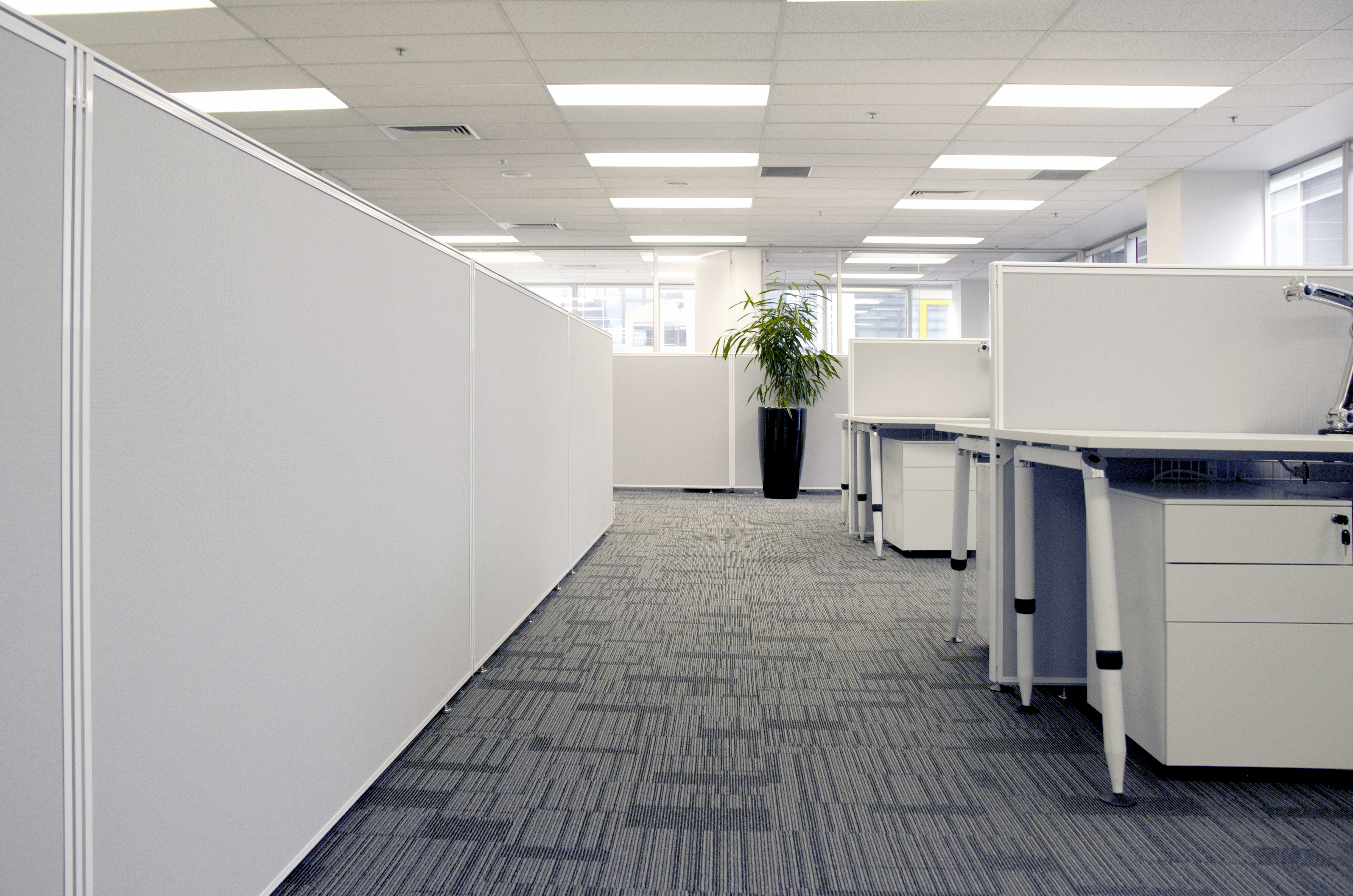 Interior 2 .jpg