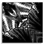 PLANT REFLECT 0.1